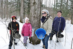 kids helping with maple sap